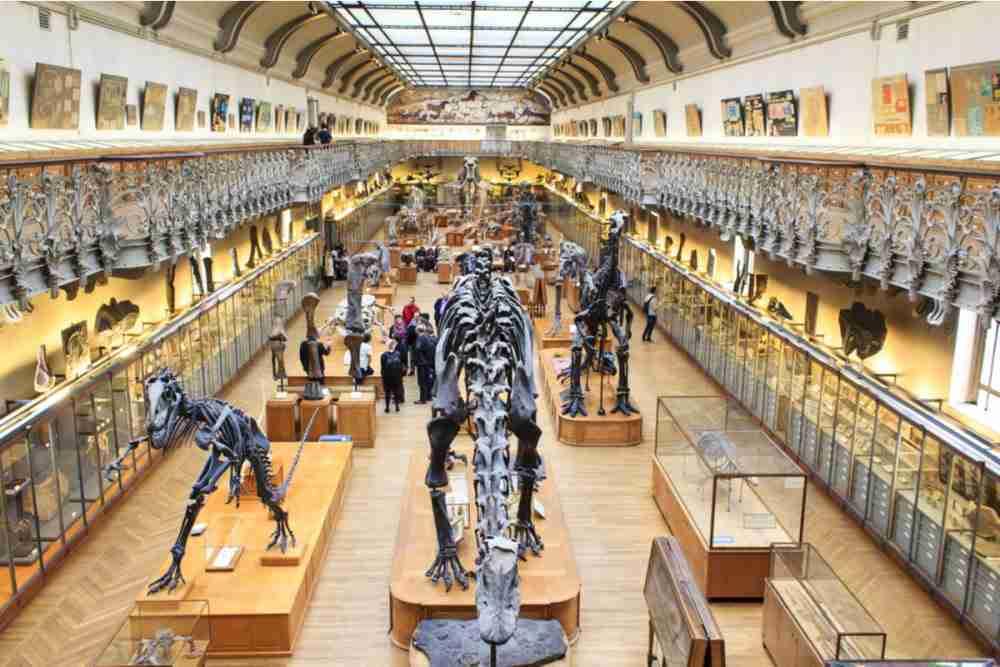 Das Museum des Menschen in Paris in France