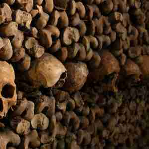 A Guide to The Paris Catacombs in Paris in France (Editorial)
