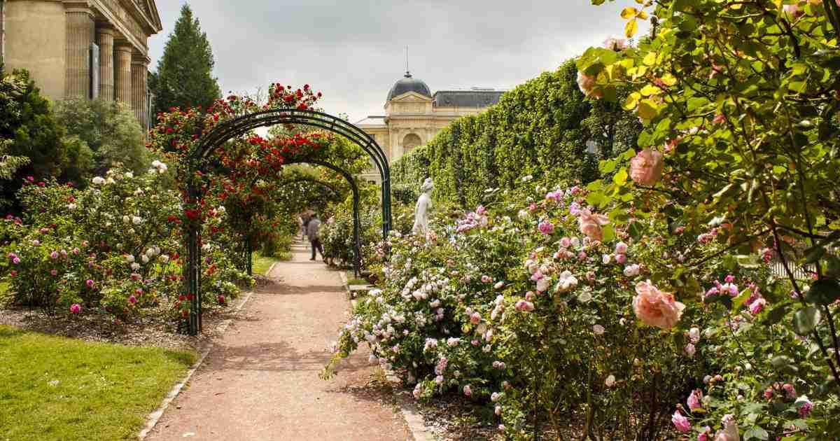 Visit of Jardin des Plantes, the Botanical Garden of Paris